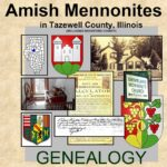 Cover of Amish Mennonites in Tazewell County